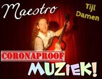 Maestro Muziek Interactieve Kindervoorstelling
